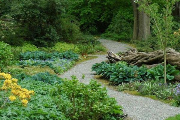 Dunn-gardens