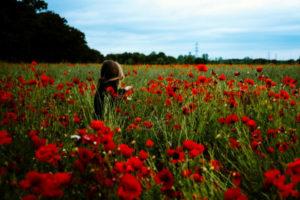 woman-field-flowers