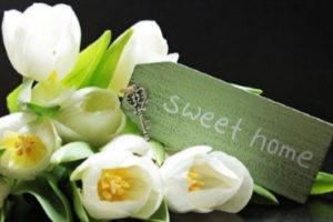 flowers-note-sweet-home